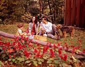 Picture Of 1950s Family In Backyard Having Picnic From