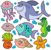 Drawing Of Aquatic Animals Collection K1933713 Search