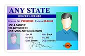 clipart drivers license