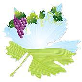 banque d 39 illustrations arbre t fruit raisin vignoble plante saisons u12727685. Black Bedroom Furniture Sets. Home Design Ideas