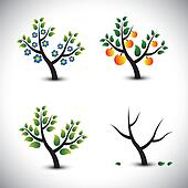 Clipart of Four seasons - spring, summer, autumn, winter. Art tree ...