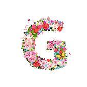 В g цветы