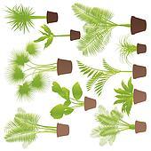 Clip art set van tuinbeelden planten k13838378 zoek clipart illustratie posters - Riet voor struik ...